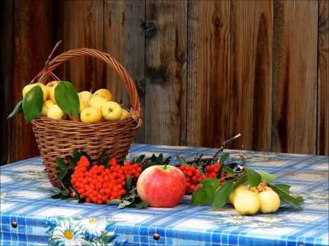 Яблони на Урале. Проверенные сорта