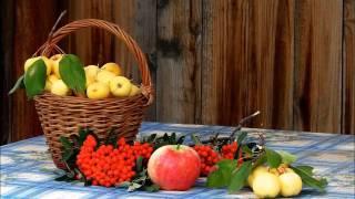 видео Наиболее подходящие сорта яблонь для Подмосковья: описание. Какие сорта яблок выбрать для Подмосковья, чем они отличаются?
