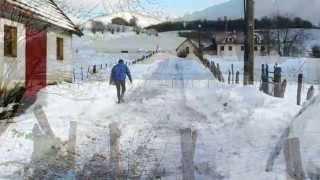 Navarra  238  AURIZBERRI   ESPINAL  valle de Erro
