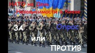 За или против НАТО на День Независимости прямым текстом говорят люди в Киеве