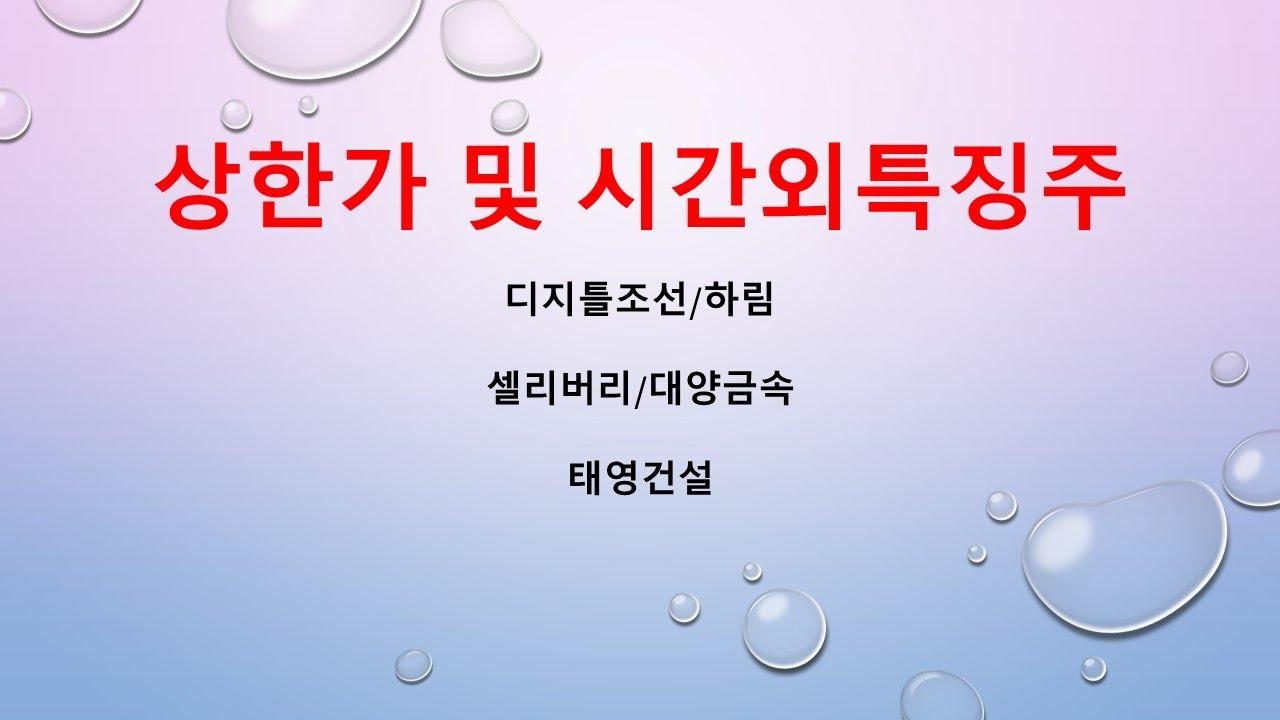 [시간외특징]디지틀조선/하림/셀리버리/대양금속/태영건설