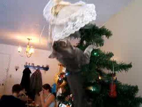 Kitten Climbs Christmas Tree to Attack Angel - YouTube