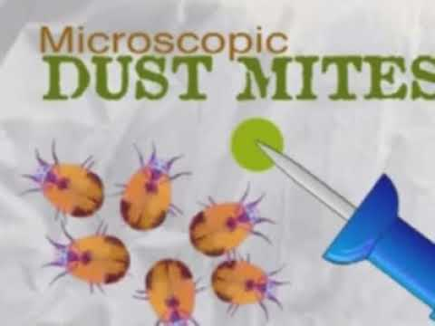 Prevent Dust Mites with a Waterproof Matress Pad that helps reduce Allergies