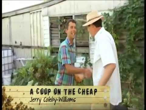 A Coop on the cheap