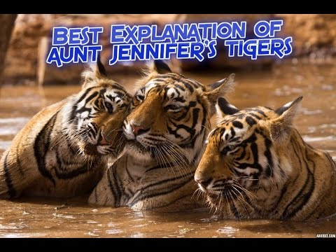 Flamingo, Class XII, Core Course, Poem - Aunt Jennifer's Tigers by Adrienne Rich.