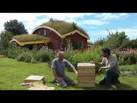 Bees And Beekeeping / Using the Rose Hive Method Part 1