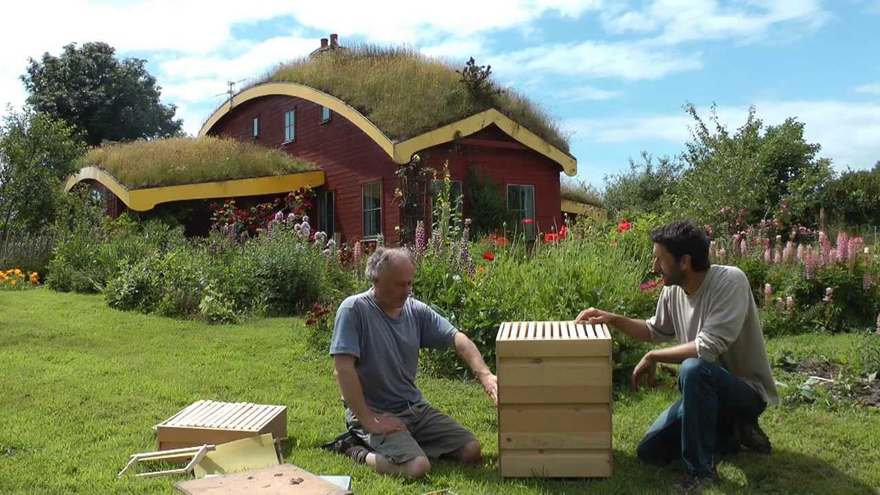 bees and beekeeping using the rose hive method part 1 youtube