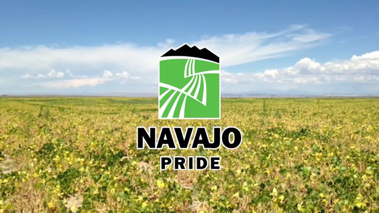 navajo agricultural products industry napi farmington nm - 1280×720