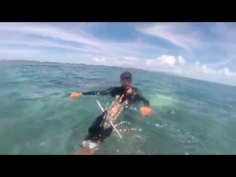 Spearfishing & hunting Thursday Island, Torres Strait
