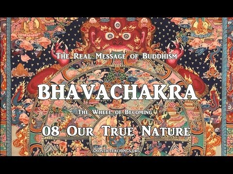 Bhavachakra 08 Our True Nature
