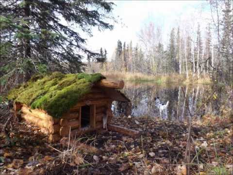 Casey's log cabin doghouse - YouTube