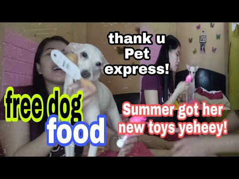 SUMMER got her new toy and free dog food from pet express!