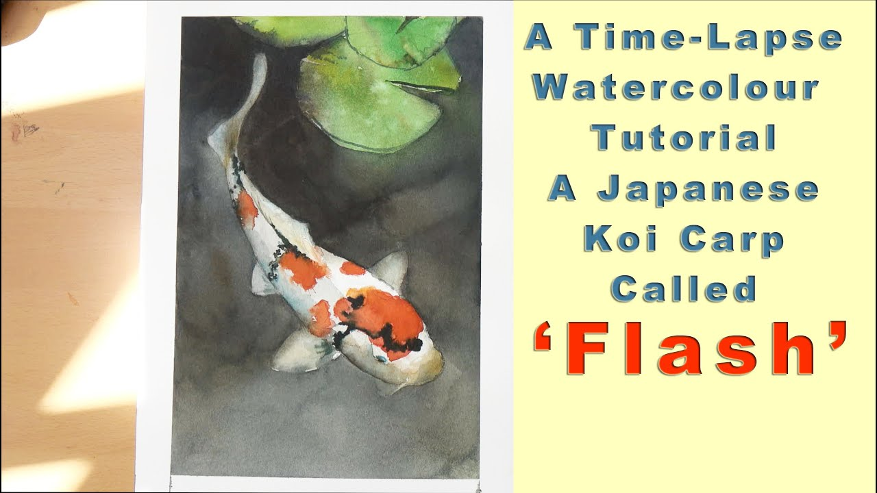 Download Koi Fish Watercolor Tutorial Gif