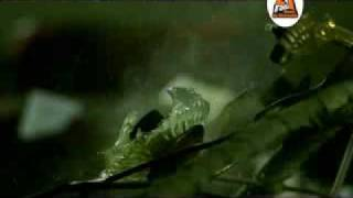Alb si Negru Amintiri 2009 Video Original HD by ArMy25