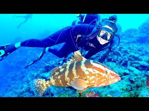 SSL 3 ~ Sea Horses, Bat Caves, and Fire on the Mountain, on SABA!