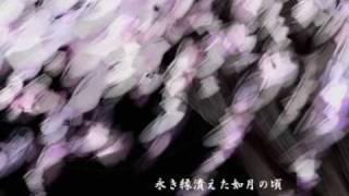 黄泉桜 /  MEIKO   [ Full ]