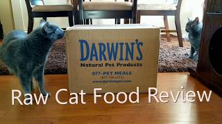 Darwin's Natural Pet Products Natural Selections Raw Cat Food Review