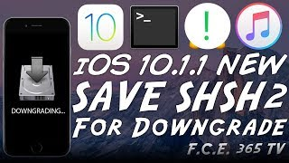 iOS 10.1.1 - How to Save SHSH2 Blobs For Future iOS Downgrades (TSSChecker)