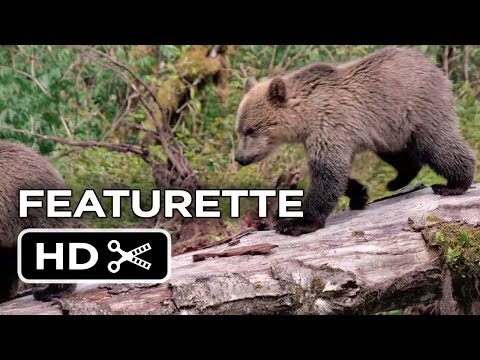 Bears Featurette - Protecting Wildlife (2013) - Disneynature Documentary HD