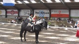 Dag van het Iberische paard 2014 Bunschoten