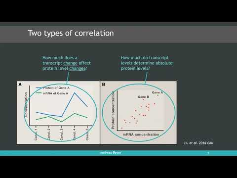 To what extent do mRNA levels determine protein concentrations?
