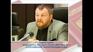 Андрей Пургин(ДНР). О российской паспортизации в республике