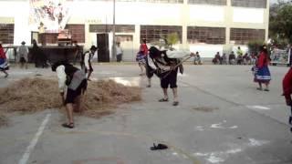 Trigo Eray - Apurimac : 5D Concurso de Danzas Simón Bolívar 2014