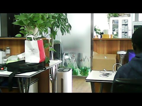 Office Live Stream in Beijing