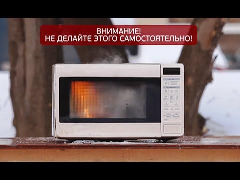 Научная кухня ЕХперименты с Антоном Войцеховским