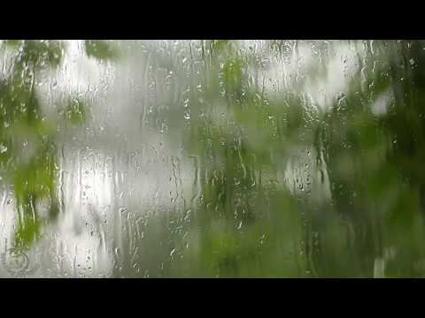 🎧 Thunderstorm & Rain Sounds On A Window, 8 Hours Of Relaxing Wind, Rainfall And Thunder Ambience