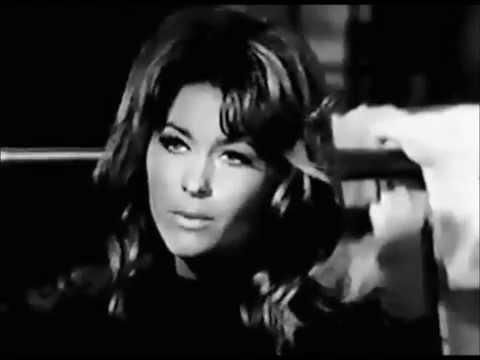 Michele Carey in the TV  T.H.E. Cat