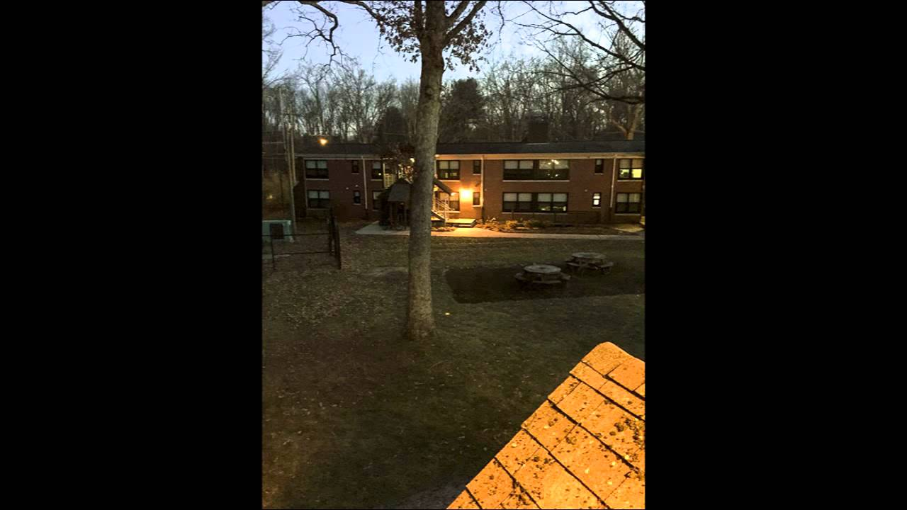 Life At Northwood Apartments Uconn