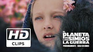 El Planeta de los Simios: La Guerra | Clip Nova Subtitulado