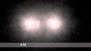 Unknown Lifeform Ufo Sighting January 4, 2014