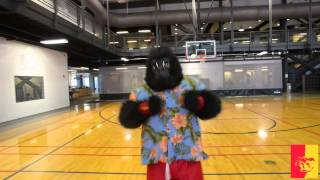 College Mascot GUS - HALF-COURT SHOT