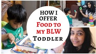 how i offer food to my blw toddler   indian mommy vlogging channel