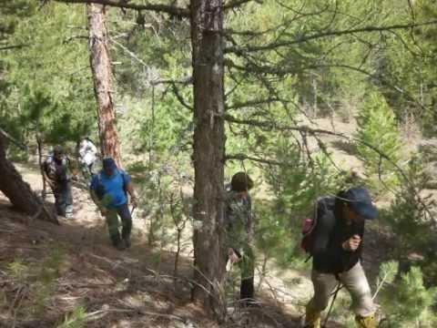 Genç Trekking Etkinlik Video