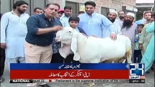 Gujranwala Sacrificial Animal Competition Left Behind in Beauty With Lahore | 24 News HD