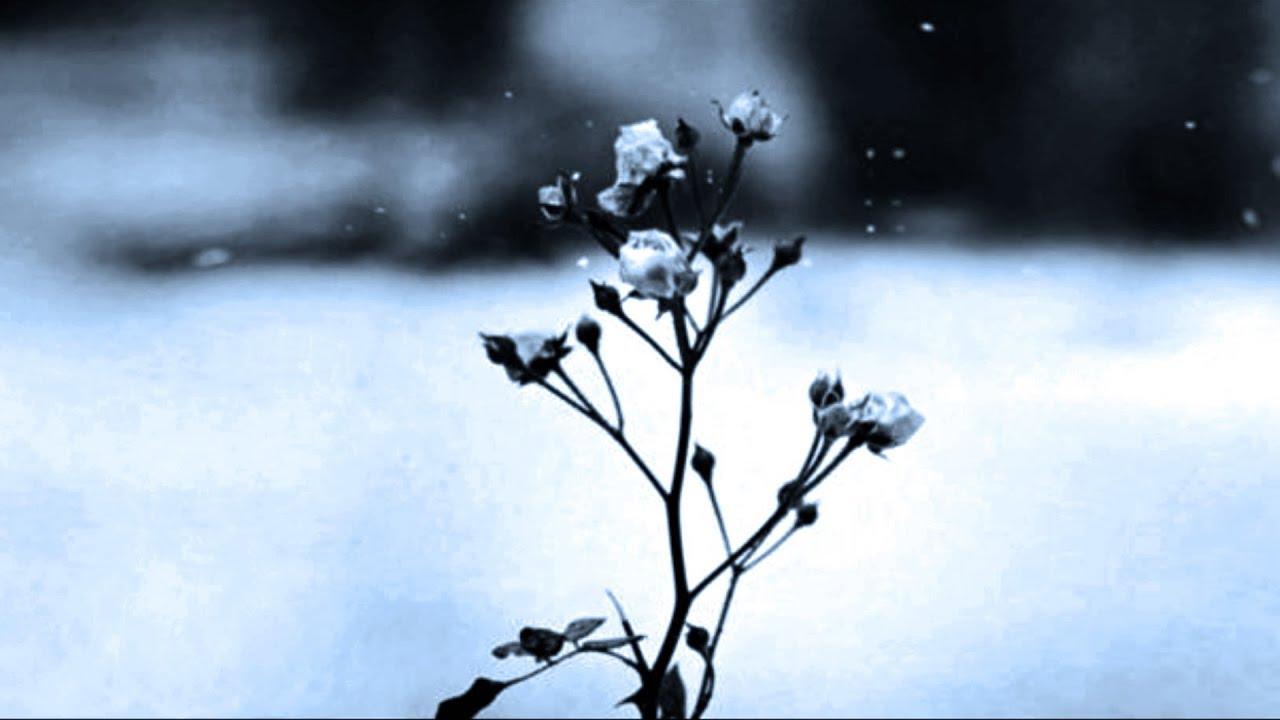 Chopin - Spring Waltz - 1 hours
