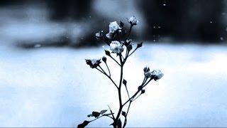 Chopin Spring Waltz 1 hours