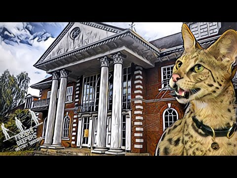 WE FOUND A $20k CAT on billionaires row FINDERS BEEPERS