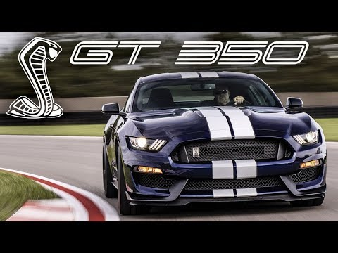 Shelby GT - EVERYTHING You Need to Know!