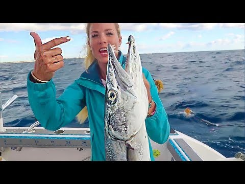 Florida Deep Sea Fishing MONSTER BARRACUDA On FREE Must-Have Bait