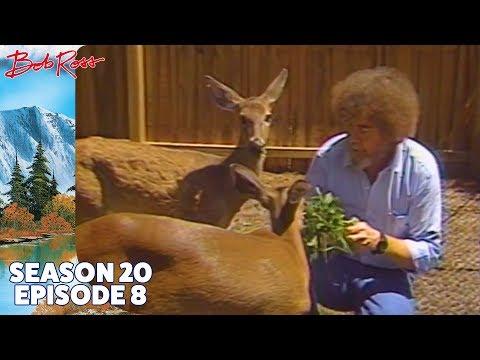 Bob Ross - The Old Oak Tree (Season 20 Episode 8)