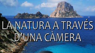 La natura a través d'una càmera
