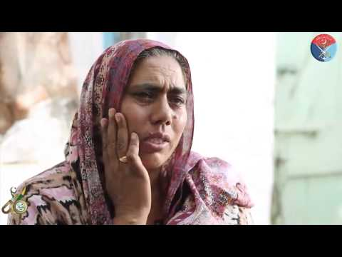 Interviews of Mothers of Martyrs