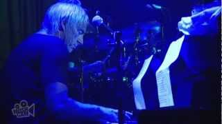 Paul Weller - Trees (Live in Sydney) | Moshcam