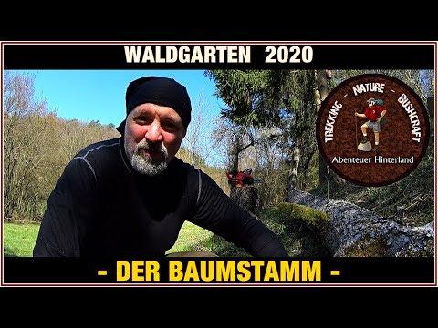 ???? Waldgarten / Forest Camp 2020 #07 ????