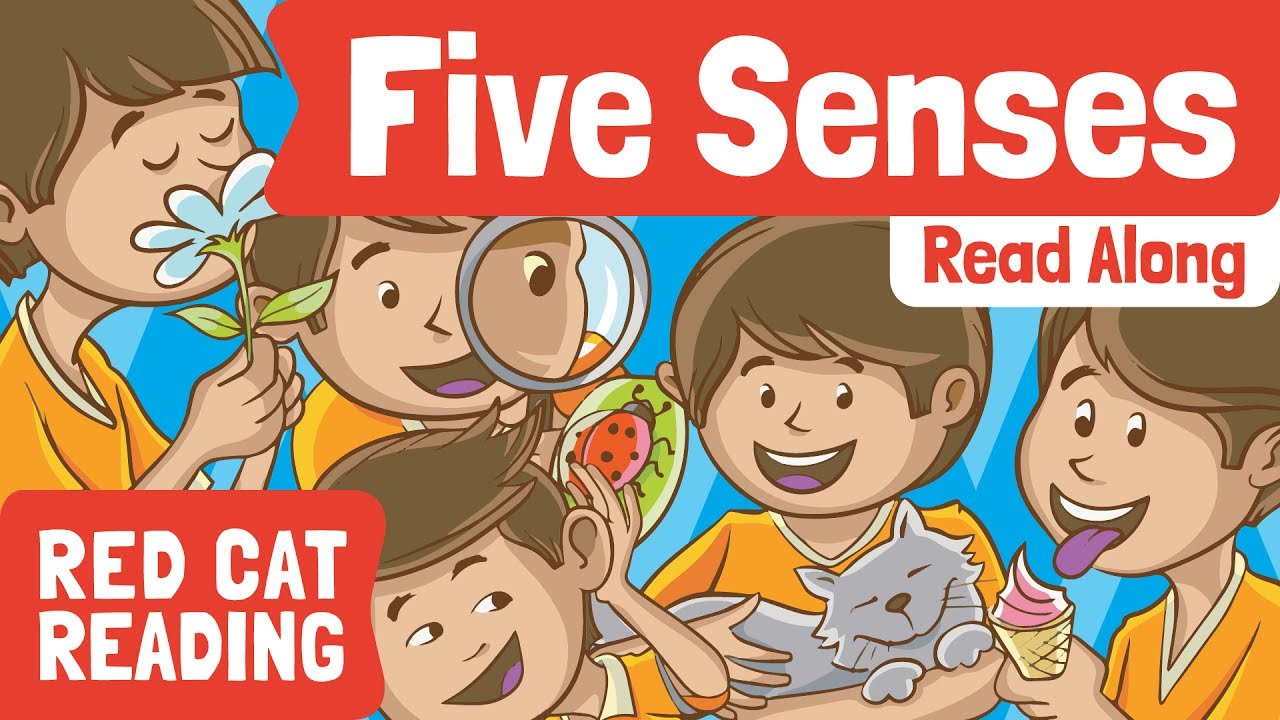 Five senses pictures for kids