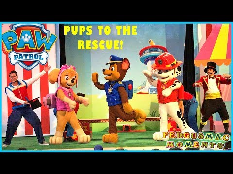 Paw Patrol Live Show Pups to the Rescue with Skye's 1st Mall